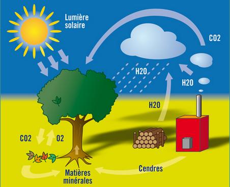 Schéma biomasse